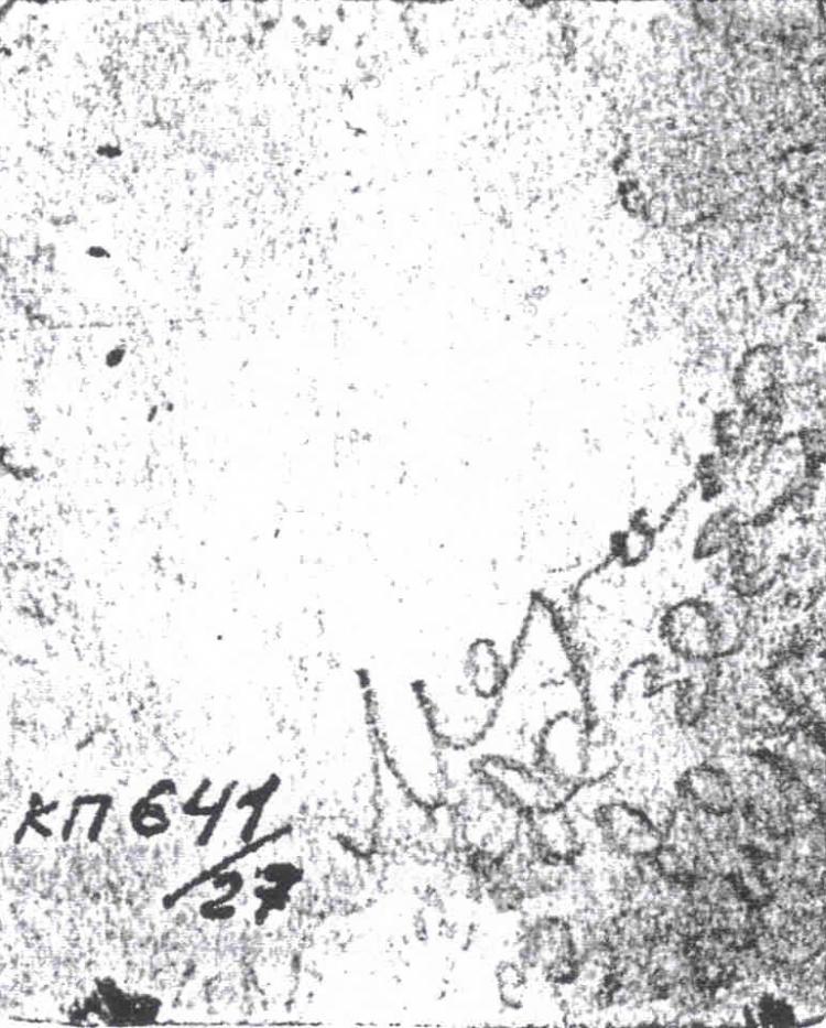 Наследие Марины Цветаевой: фотогалерея, фото, снимки, потреты: http://photo.tsvetayeva.com/details.php?image_id=302